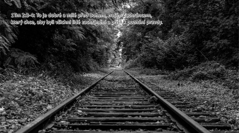 Boží vůle - John MacArthur